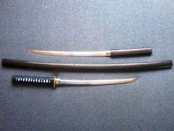 Aoshi Shinomori's Double Kodachi