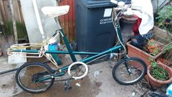 recovered moulton deluxe