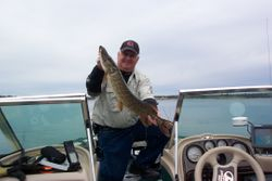 Pike in the sound