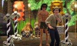 3 - The Jungle