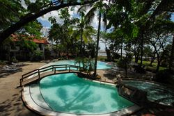 Free Form Island Pool