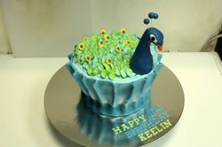 Giant Peacock Cake