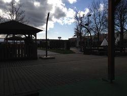 Shark Garden in Gennaio