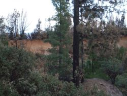 Dry Hill Placer Claim