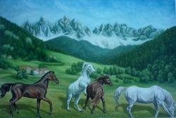 Razigrani Konji