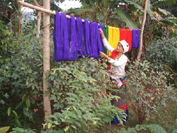 Drying up the threads for weaving