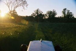 Mowing with 1963 CCO