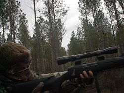 Dalton taking aim