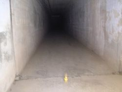Death Tunnel picture 1