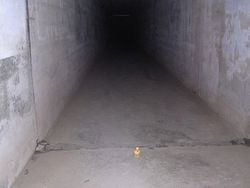 Death Tunnel picture 4