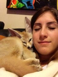Extreme cuddling