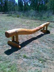 Big suspended log