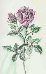 Original Rose painted