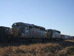 MGLX 3138 and 3143