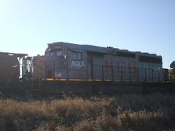 MGLX 3138