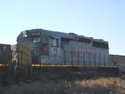 MGLX 3143