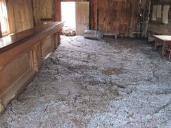 Mud in Skinner's Saloon
