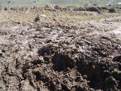 Gulch mud remains
