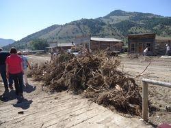 Sagebrush Piles