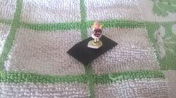 Veronique Cornish ornament