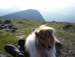 Echo climbs his 1st mountain