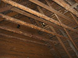 Inside Burns Cottage