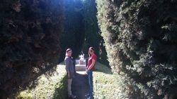 Sabatinijevi vrtovi 2, Madrid