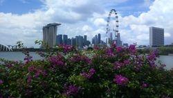 Singapur- East Coast Parkway