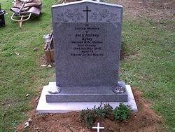 Karin grey peon top memorial
