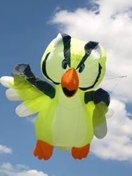 Bedford International Kite Festival