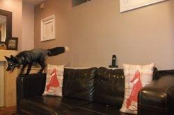 I'm gunna jump!