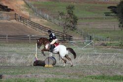 Swan Valley Hunter Trials