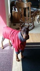 I love my winter coat!