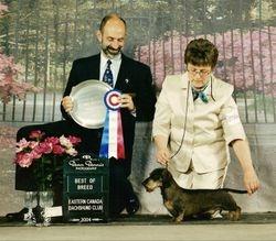 Winston Best in Specialty Show
