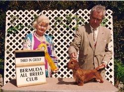 Peanut and Thom in Bermuda