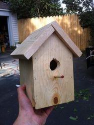 The $2 birdhouse
