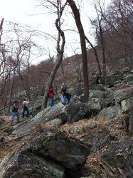 Appalachian trail I