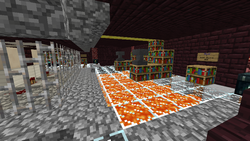 "Inside ""Nether Wild Warp"""