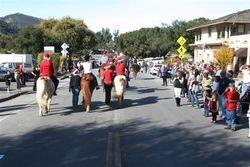 Parade Horses 3