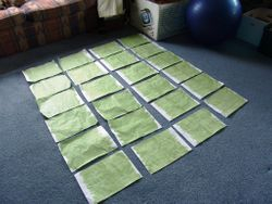 All laid out to dry - get 4 toi tois per page