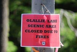 Olallie fire