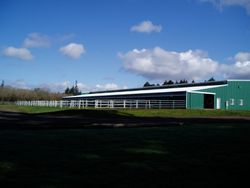 View of paddocks and arena barn from a different direction