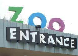 March 2013 Zoo Field Trip