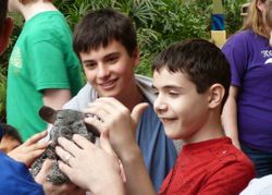 Chinchilla with the guys