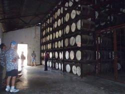 Rum kegs