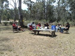 Relaxing under the gum trees