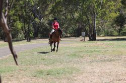 Amber riding Maxi