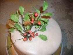 Holly & Ivy Cake