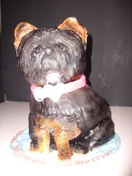 Dog Cake 3