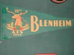 10th Blenheim
